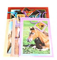 Dárkové tašky koně - sada 4 ks